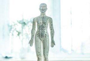 Osteopathische Behandlung-Osteopthie-Hamburg-Rissen-Behandlung-Ganzheitlich-Dr.med. Maren Brandes