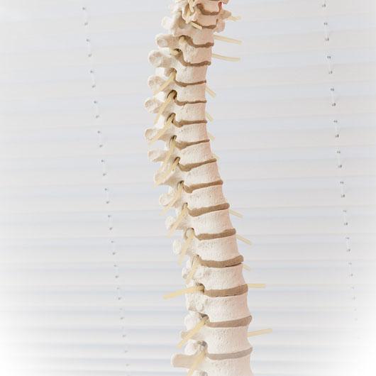 Schmerzen-in-Kopf-und-Nacken-Bandscheibenvorfall